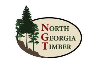 North Georgia Timber